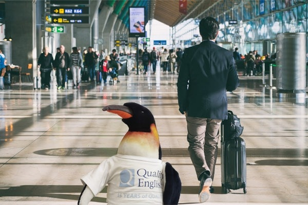 Quentin the Penguin at the airport